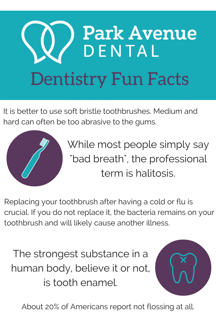 Dentistry Fun Facts - Park Avenue Dental